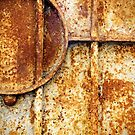 Rusty gate detail by Silvia Ganora