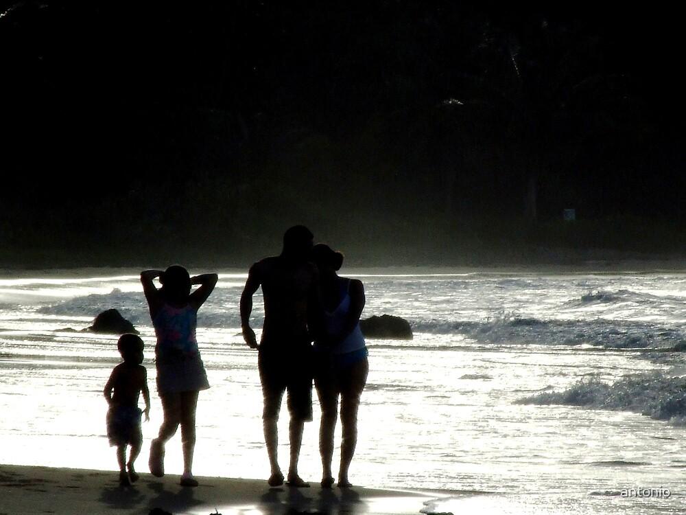 The family by antonio