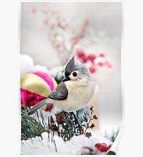 Cute Winter Titmouse Bird Poster