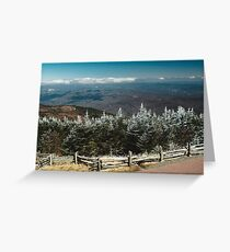 Frosted Tips Greeting Card