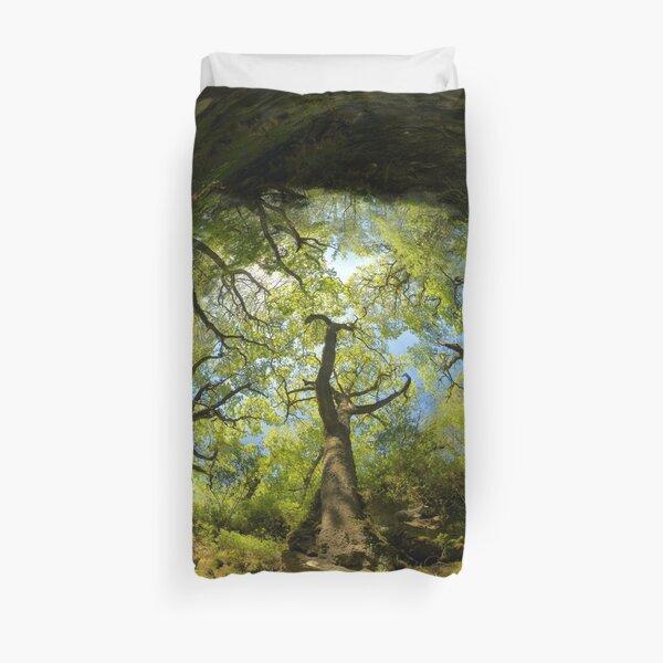 Ness Glen, Mystical Irish Wood Duvet Cover