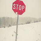 Stop Sign by Edward Fielding