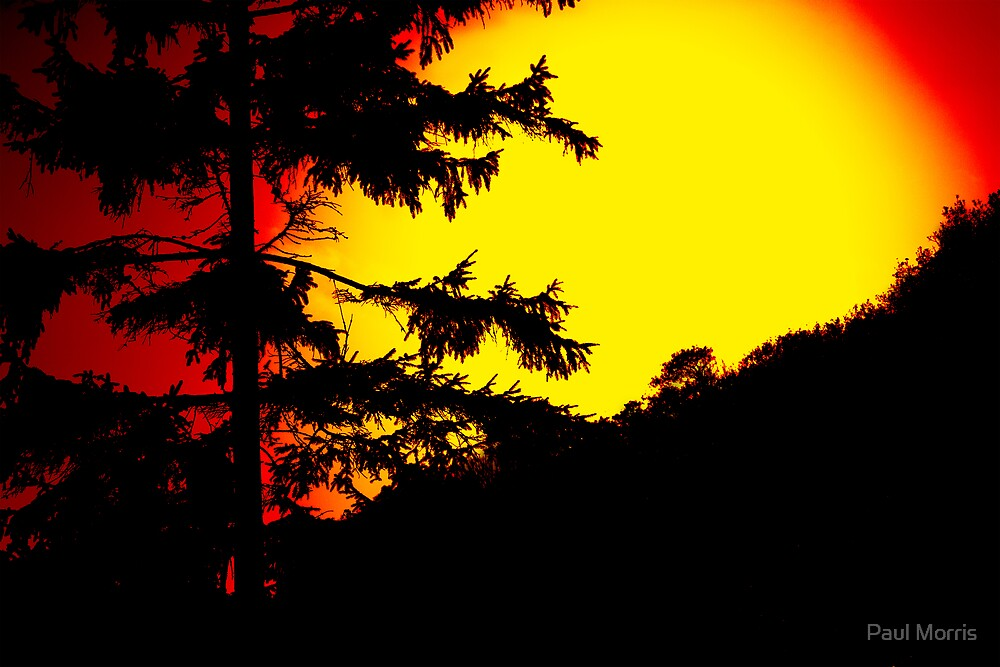 Sunset by Paul Morris