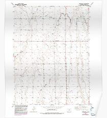 USGS TOPO Map Colorado CO Sunnydale 234660 1949 24000 Poster