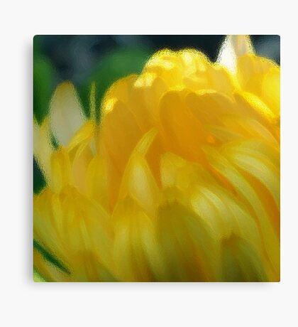 Sunshine in Bloom - the Painting Canvas Print