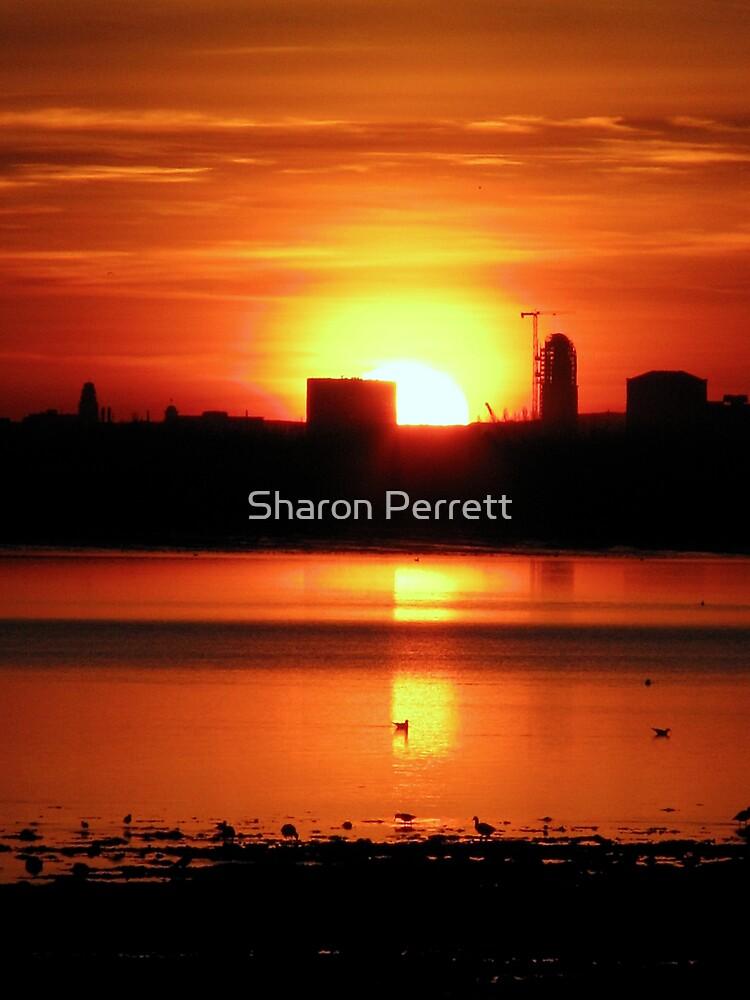 Sunset 2 11-12-07 by Sharon Perrett
