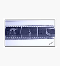 BALCK/WHITE Photographic Print