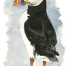Atlantic Puffin - Watercolor by skidgelstudios