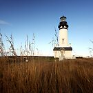 Lighthouse at Yaquina Head by Nigel Dourley