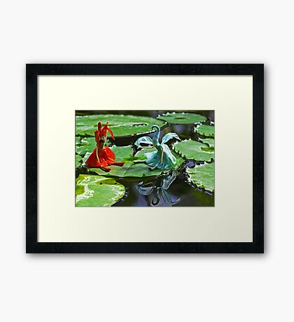 Meeting on the Lily Pad Framed Print