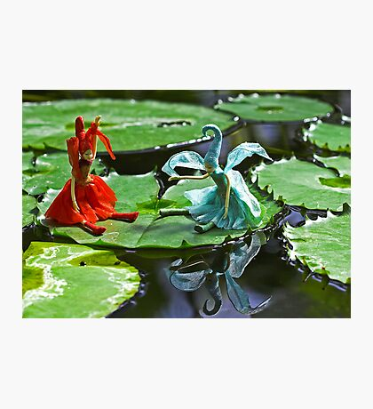 Meeting on the Lily Pad Photographic Print
