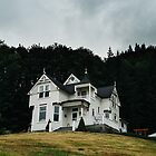 House on the Hill by thomaslawn