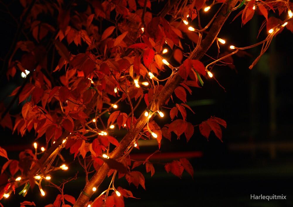 Christmas Lights by Harlequitmix