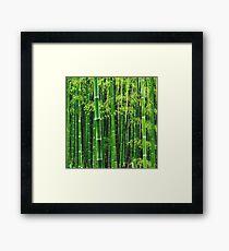 Green Bamboo Tree Framed Print
