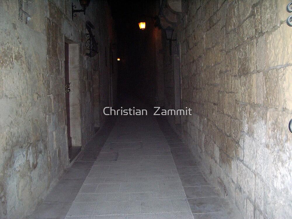Old Mdina strait road by night by Christian  Zammit