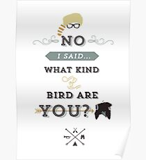 No, I said what kind of bird are YOU? Poster