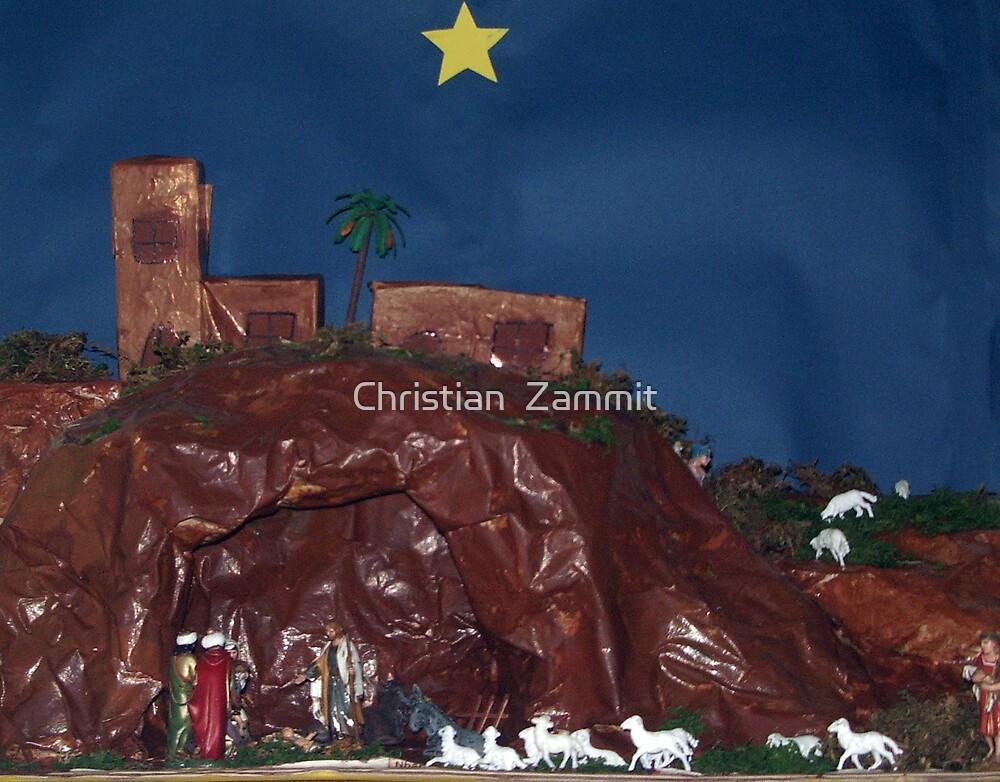 The Crib by Christian  Zammit