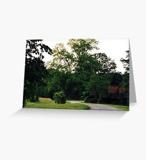 Walking on a Country Road Greeting Card