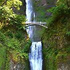 Multnomah Falls by Thomas Burtney