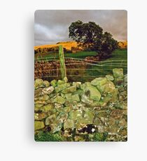 Yorkshire Dales  Canvas Print
