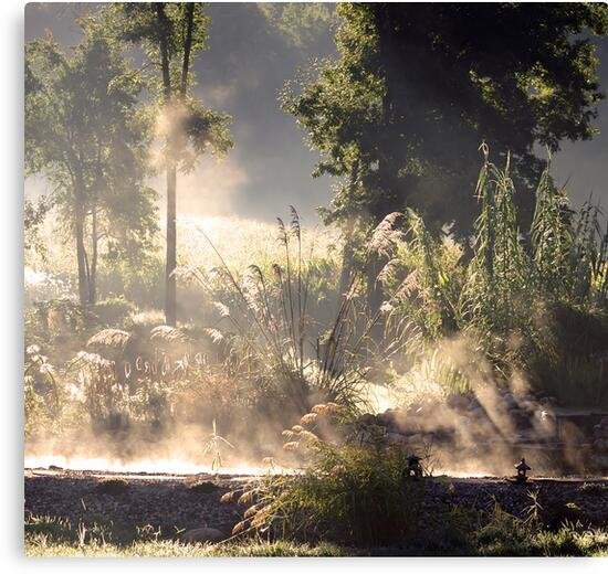 Steamy Morning Koi Pond II by velveteagle