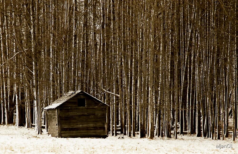 The Woods, Part 2 by aljen01