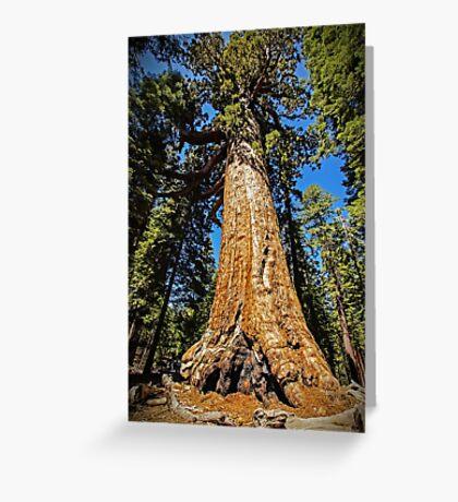 Grizzly Giant Sequoia - Mariposa Grove - Yosemite - California - USA Greeting Card