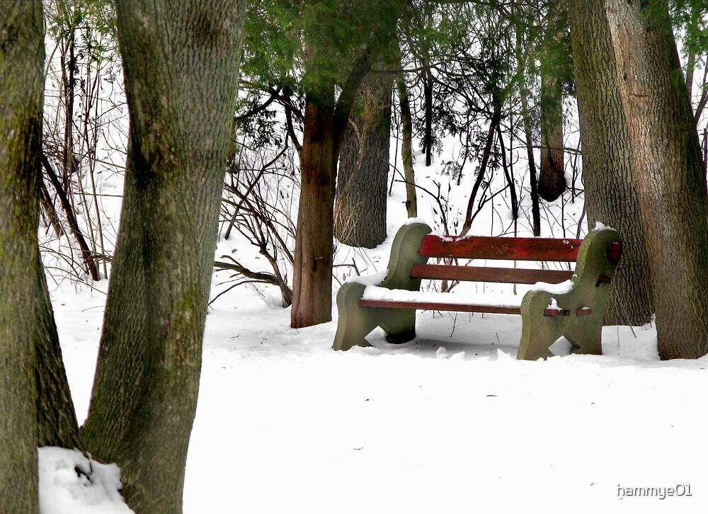 Solitude by hammye01