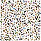 Bean Animals by Aaron Randy