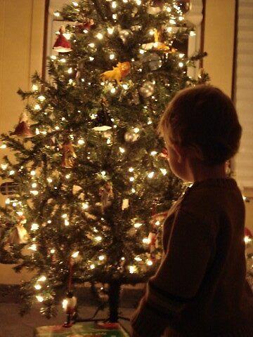 Christmas Wonder by srutrae04