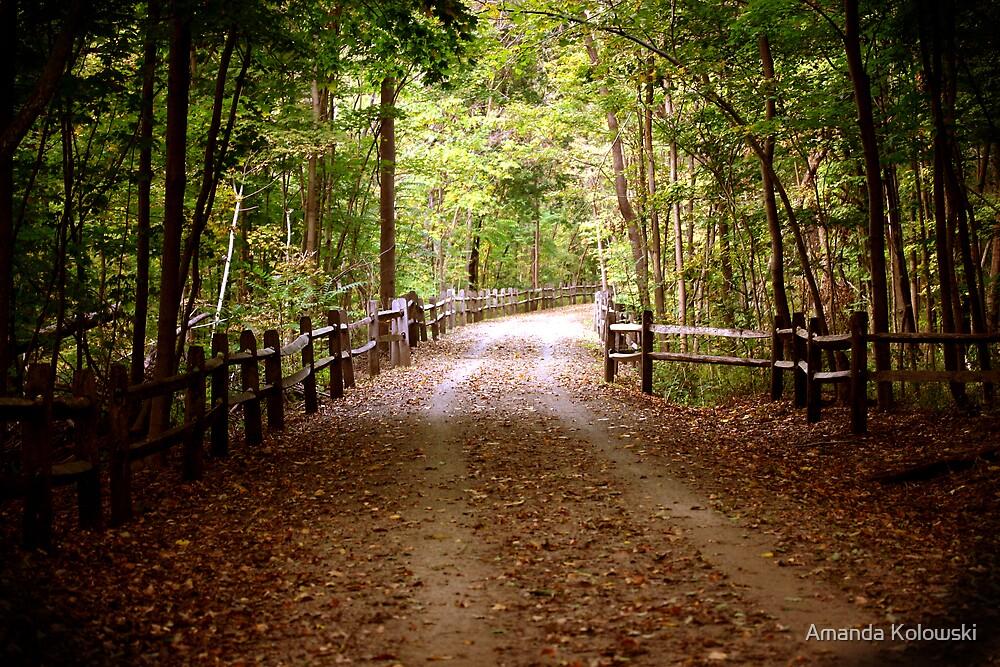 Perkiomen Trail by Amanda Kolowski