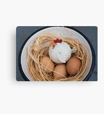 Chicken & eggs Canvas Print