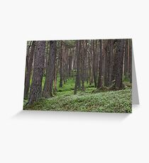 loch muick forest Greeting Card