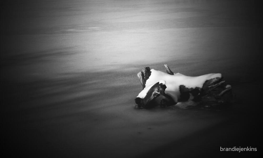 Solitude by brandiejenkins
