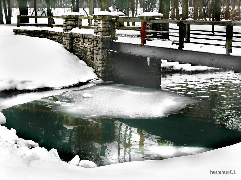 Frozen in Time by hammye01
