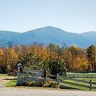 New Hampshire Country Living (Best viewed Large) by wolftinz
