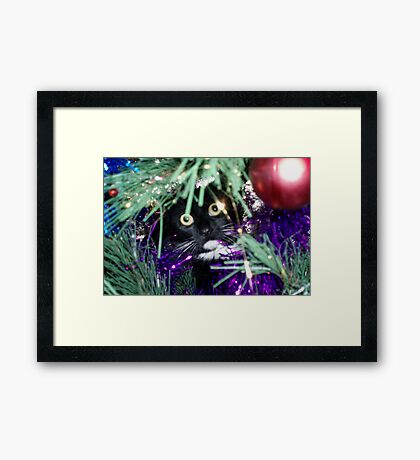 Me? I'm just decorating the tree! Framed Print