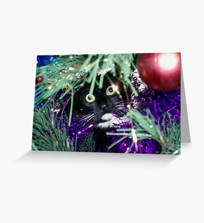 Me? I'm just decorating the tree! Greeting Card