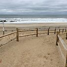 Cloudy Day at the Beach by storecee