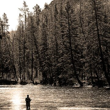 fly fishing by birus