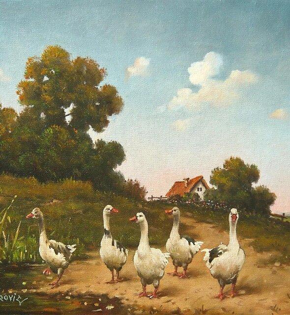geese by dusanvukovic