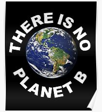 There Is No Planet B - Save Earth -	 Poster