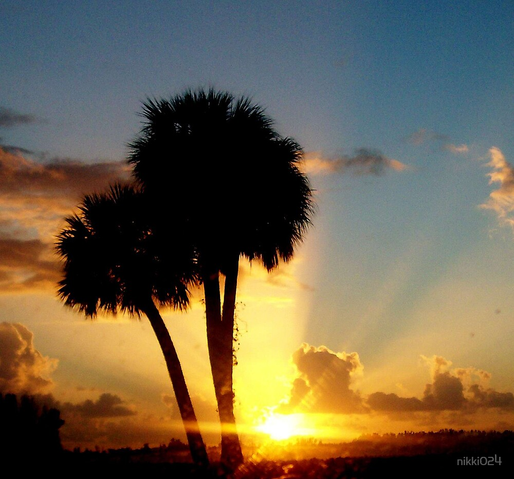 paradise sunrise by nikki024