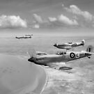 Spitfires over Tunisia B&W version by Gary Eason