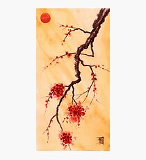 Red Sun and Plum Blossoms Photographic Print