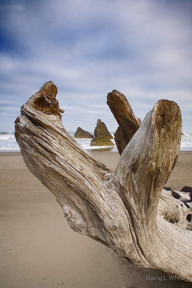 Bandon Beach (2027) by Barry L White