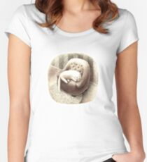 White Cat sleeping on a cozy armchair Women's Fitted Scoop T-Shirt