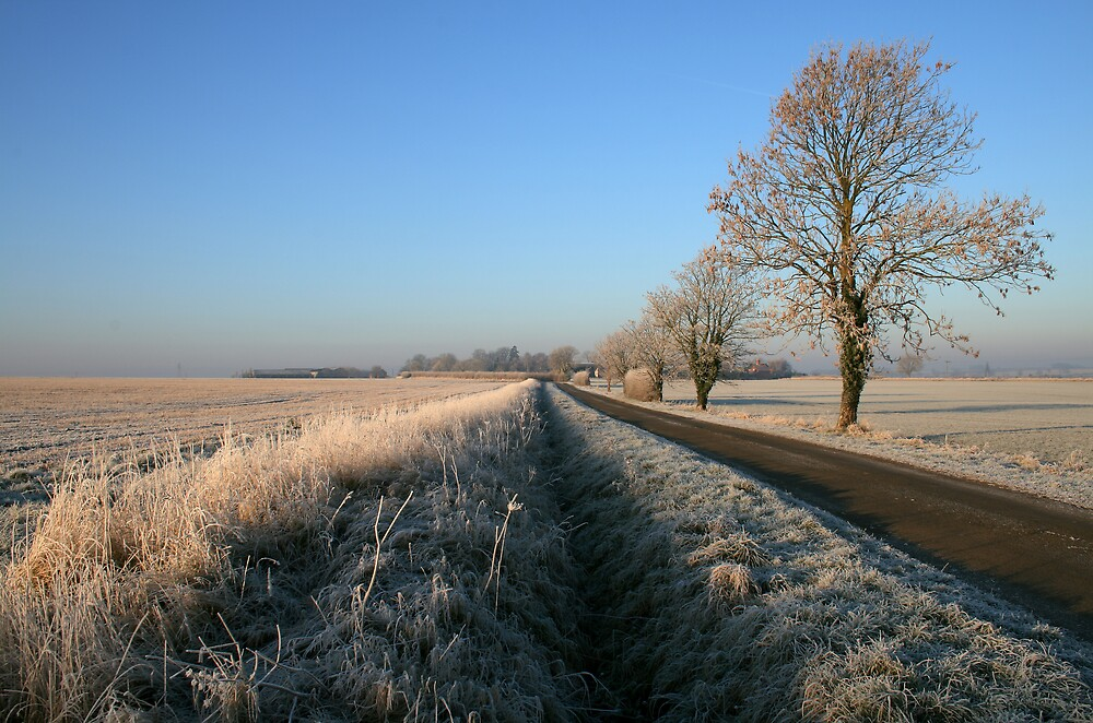Birthorpe Road Frost by Dave Pearson