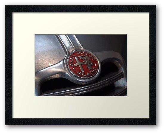 Alfa by John Schneider