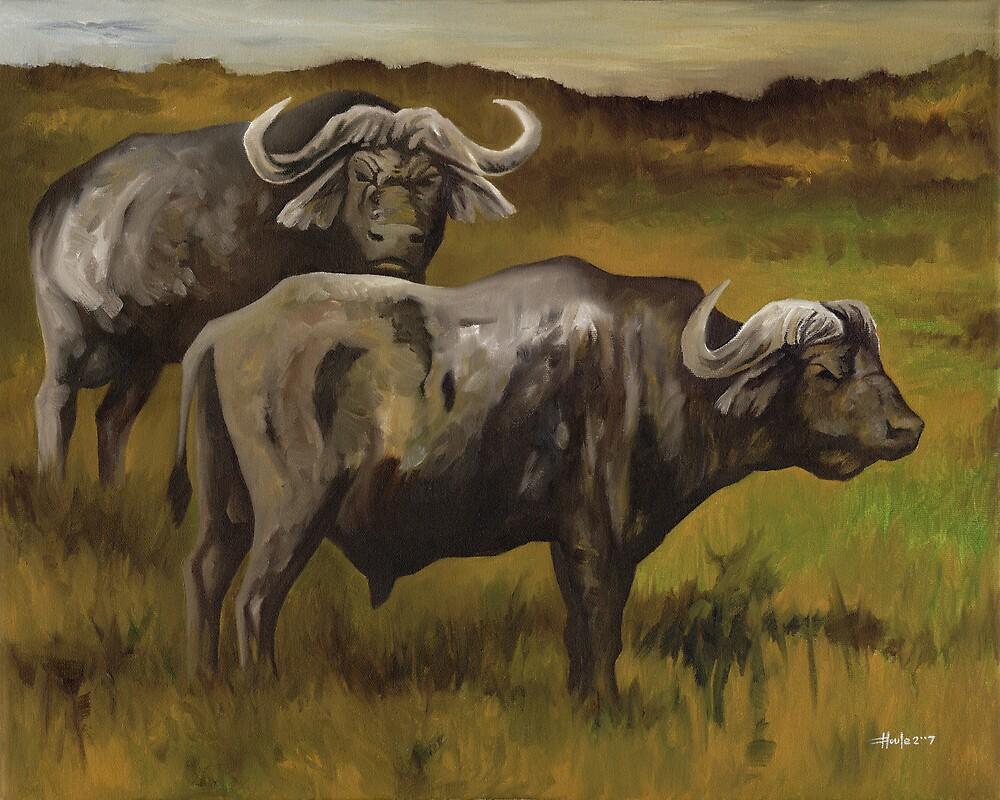 Old Bulls - Cape Buffalo by John Houle